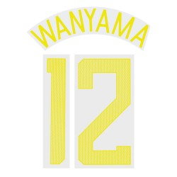 Wanyama 12 (Official Tottenham Hotspur FC 2017/18 Third Cup Name and Numbering)