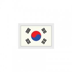 South Korea Sleeve Flag (South Korea 2018 Home / Away Sleeve Flag)