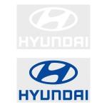 Hyundai Sleeve Sponsor (Official Chelsea FC 2018/19 Sleeve Sponsor)
