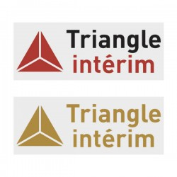 Triangle Interim Official Sleeve Sponsor Printing for AS Monaco 2018/19 Home / Away Shirt
