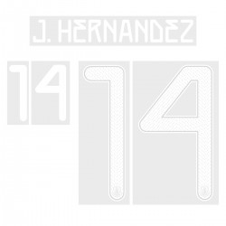 Official Name and Number for Mexico Copa America Home Shirt ***(More Players Available)
