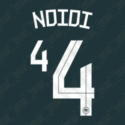 Ndidi 4 (Official Nigeria 2020 Away Name and Numbering)